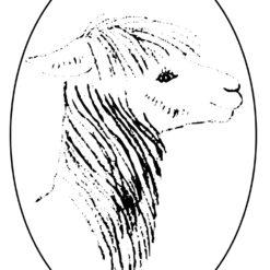 Mukuti Stud Alpacas